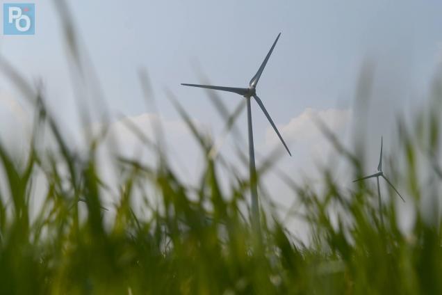 7 ha partent en fumée près des éoliennes d'Erbray.